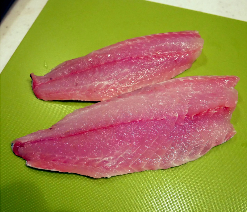 f:id:familyfishing:20190604212943j:plain