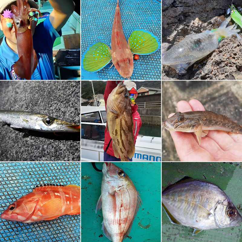f:id:familyfishing:20191222134040j:plain