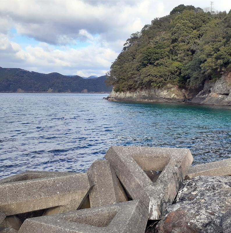 尾鷲_漁港_釣り_テトラ