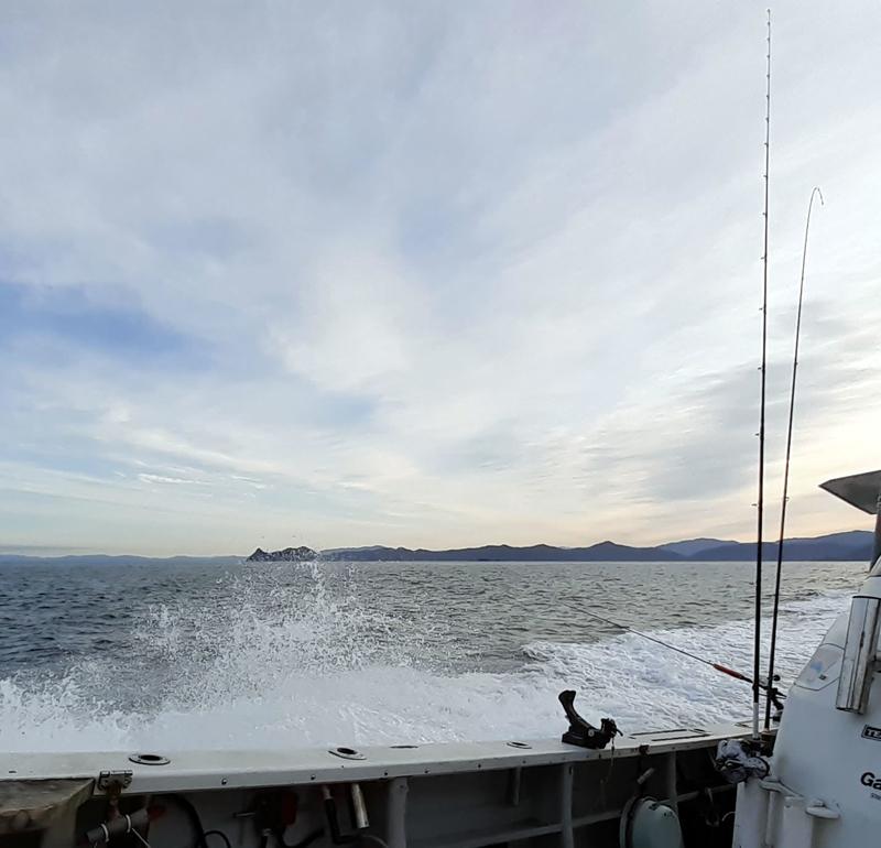 船釣り_遊漁船_港