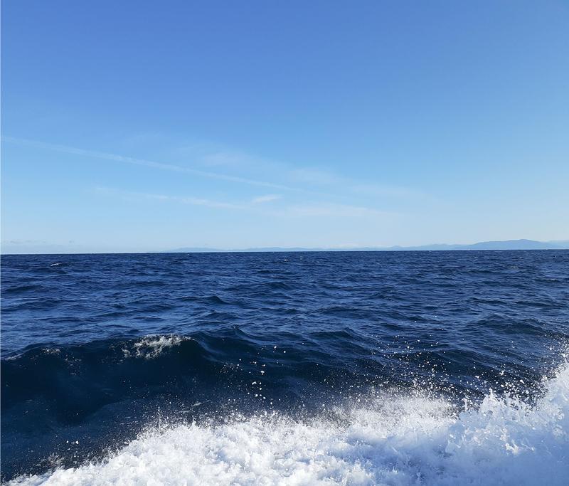 船釣り_ポイント