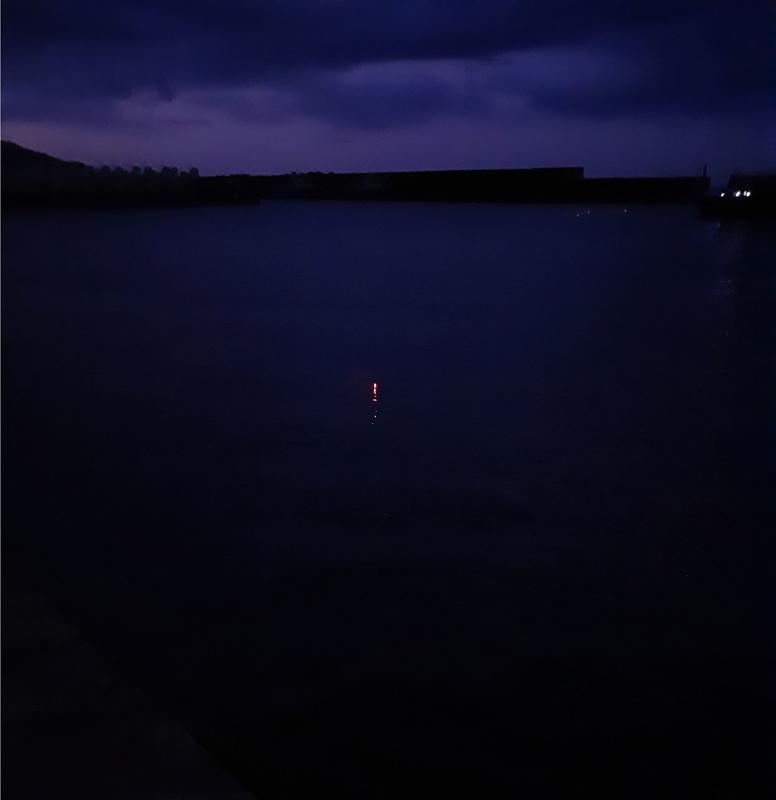ヤリイカのウキ釣り_越前の漁港
