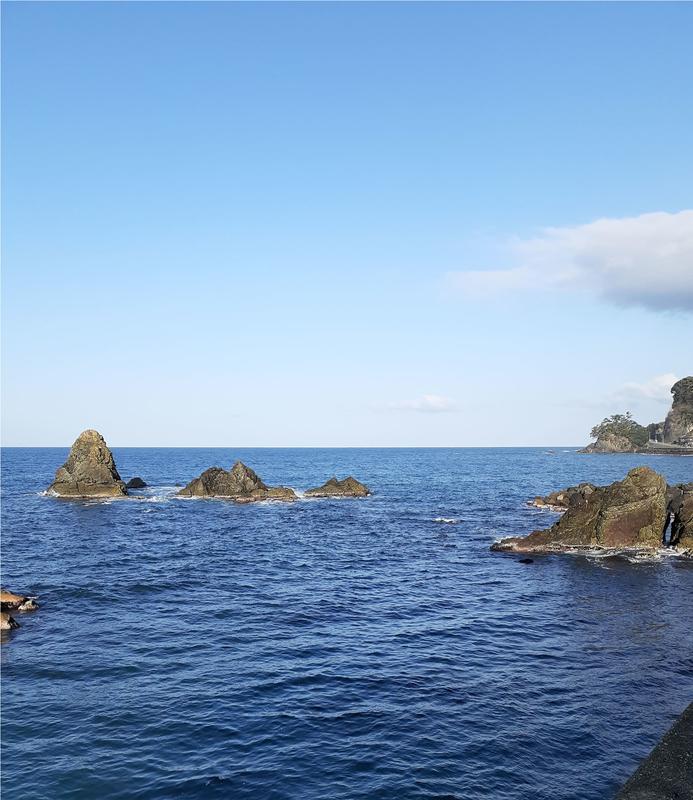 漁港_おかっぱり_エギング