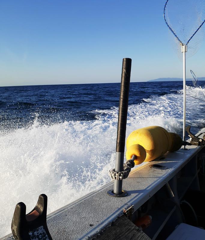 f:id:familyfishing:20200329110639j:plain
