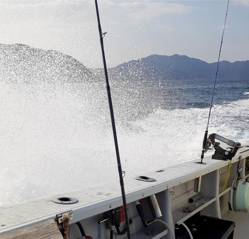 風が強い、波も徐々に高くなっていく敦賀沖