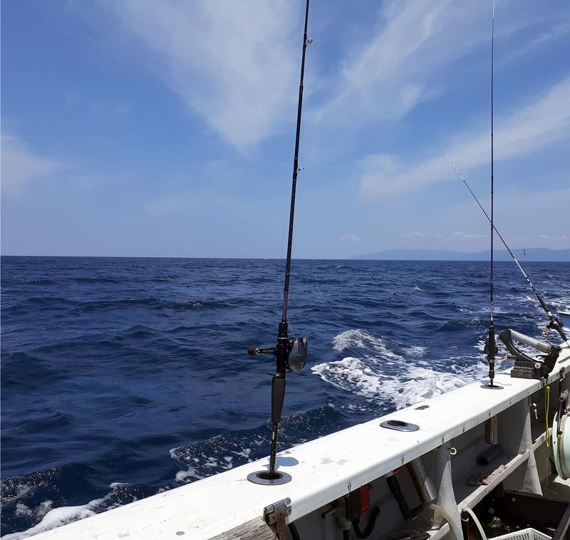 敦賀沖は波高になりつつある