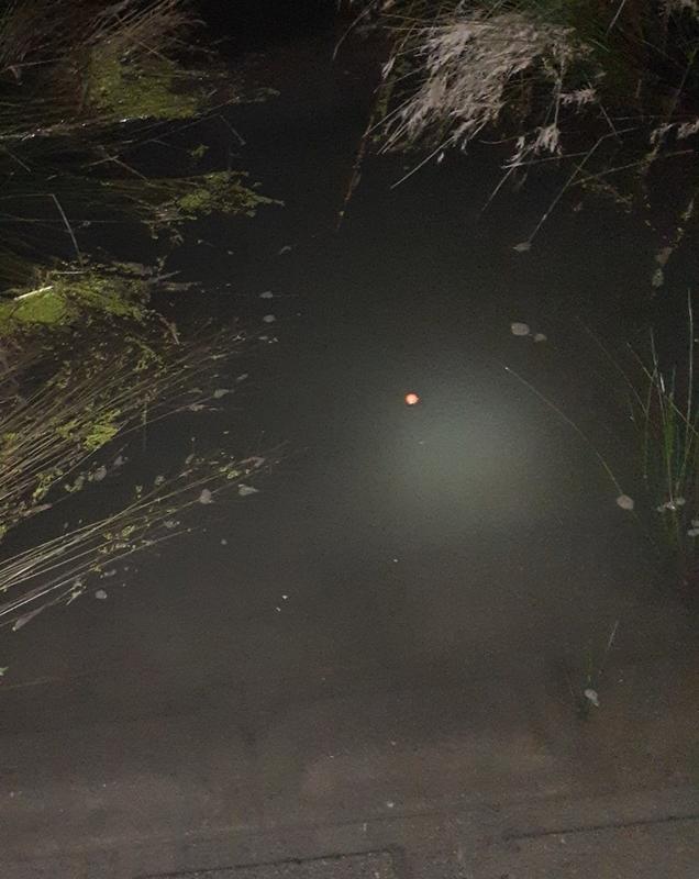 木曽川は立田大橋下流のテトラで手長エビ釣り