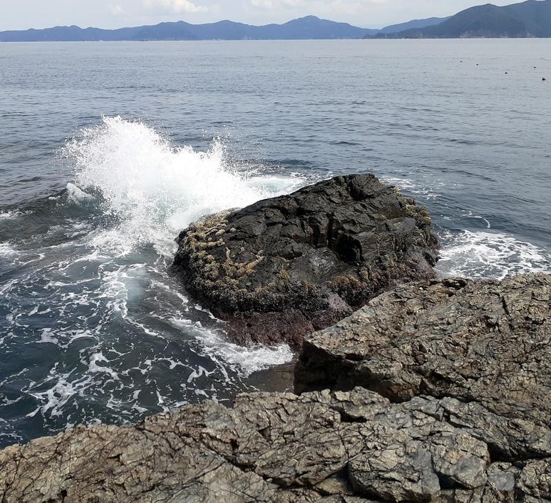 福井県若狭湾でうねりの中でエギング