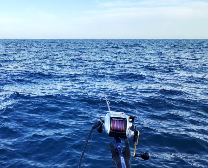 ほぼ凪の良い天気の釣り