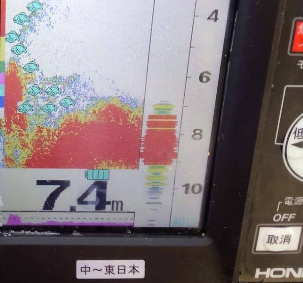 魚探で根を確認しながらメバルガシラ狙い