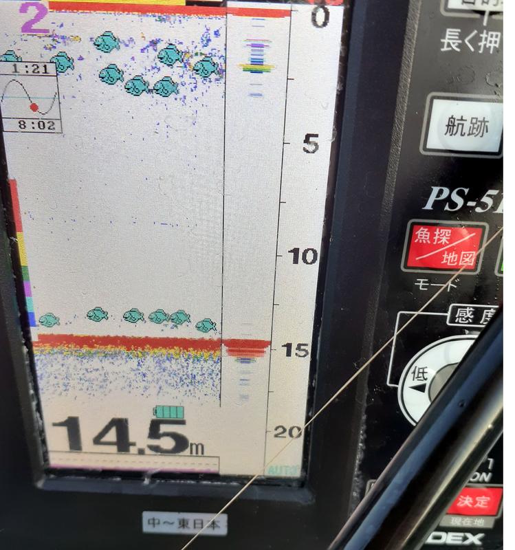 HONDEXの魚探でアジの回遊を待つ
