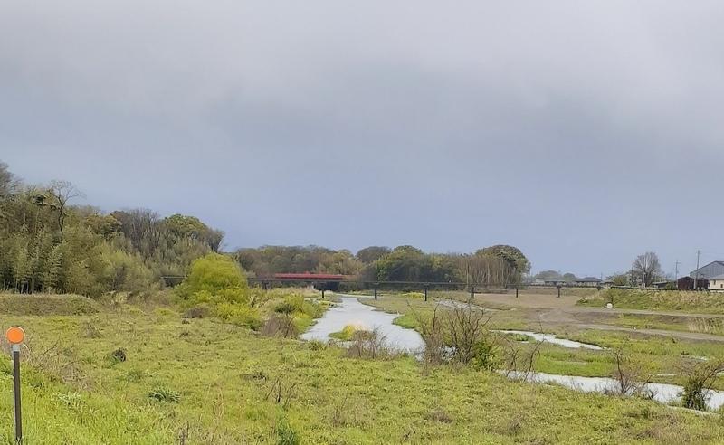 犬上川を下流より撮影