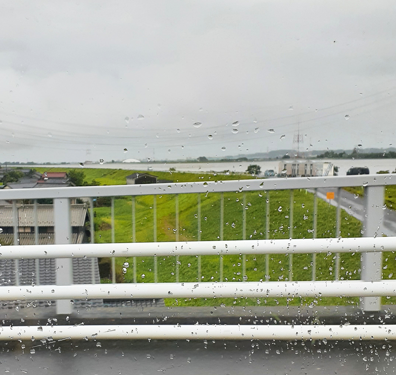 立田大橋の左岸
