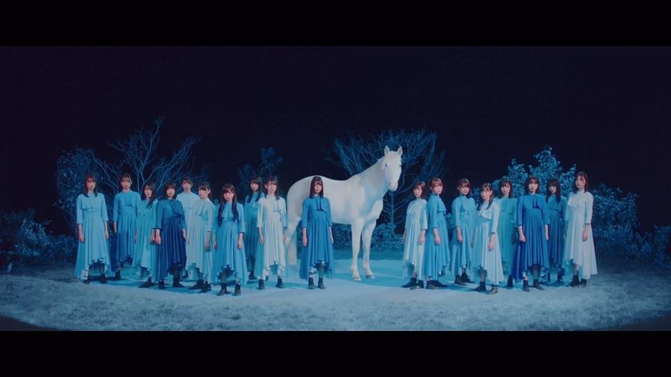 『青春の馬』MVより