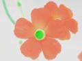[花][ウォーターカラー]オキザリス(色相変更)