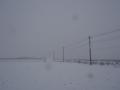 [風景]雪