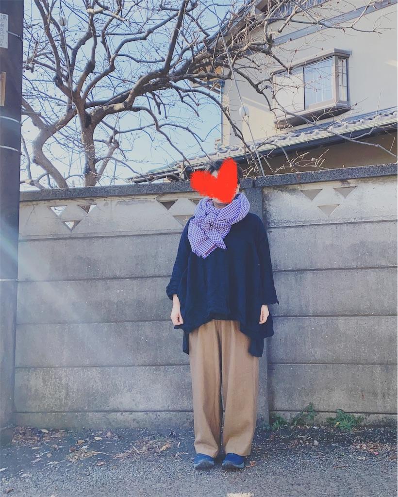 f:id:fashionclub:20210207225942j:image