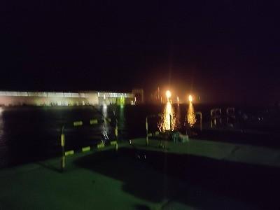 日立港第5埠頭の先客