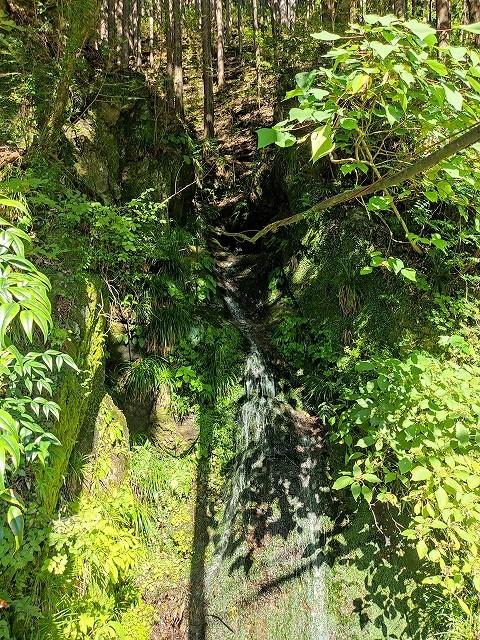 不動水 周囲の緑