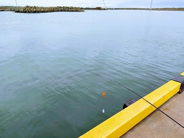 岸壁から伸ばす竿