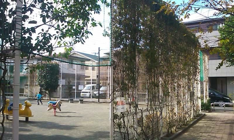 f:id:favre-4:20101219123134j:image