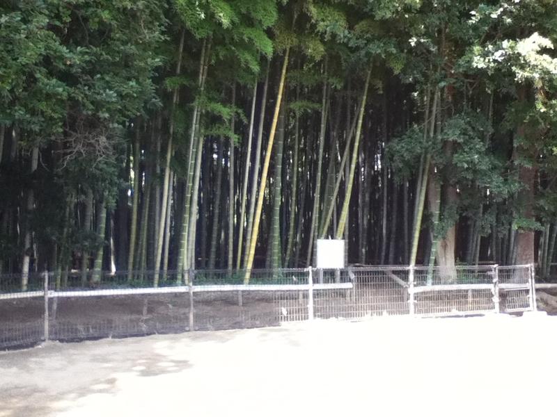 [公園][喜多見]-550- 喜多見五丁目竹山市民緑地