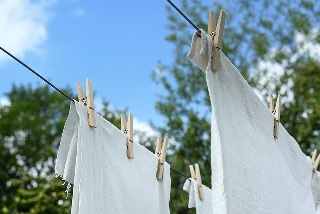 洗濯 物干し竿