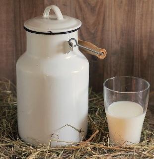 ミルク 十勝 畜産