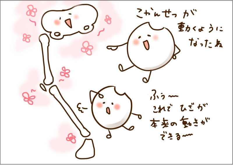 f:id:feldenhiroshima:20160728075133j:plain