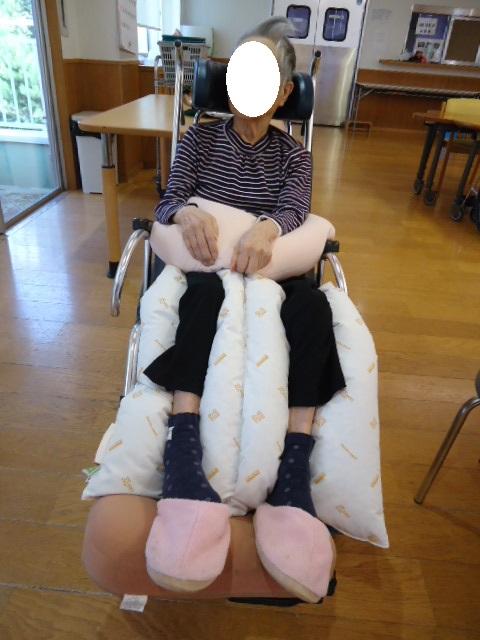 f:id:feldenhiroshima:20170130160950j:plain