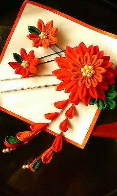 f:id:fessel:20111114144502:image