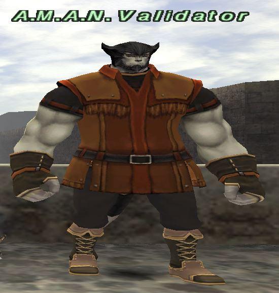 A.M.A.N. Validator