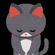 猫のお辞儀