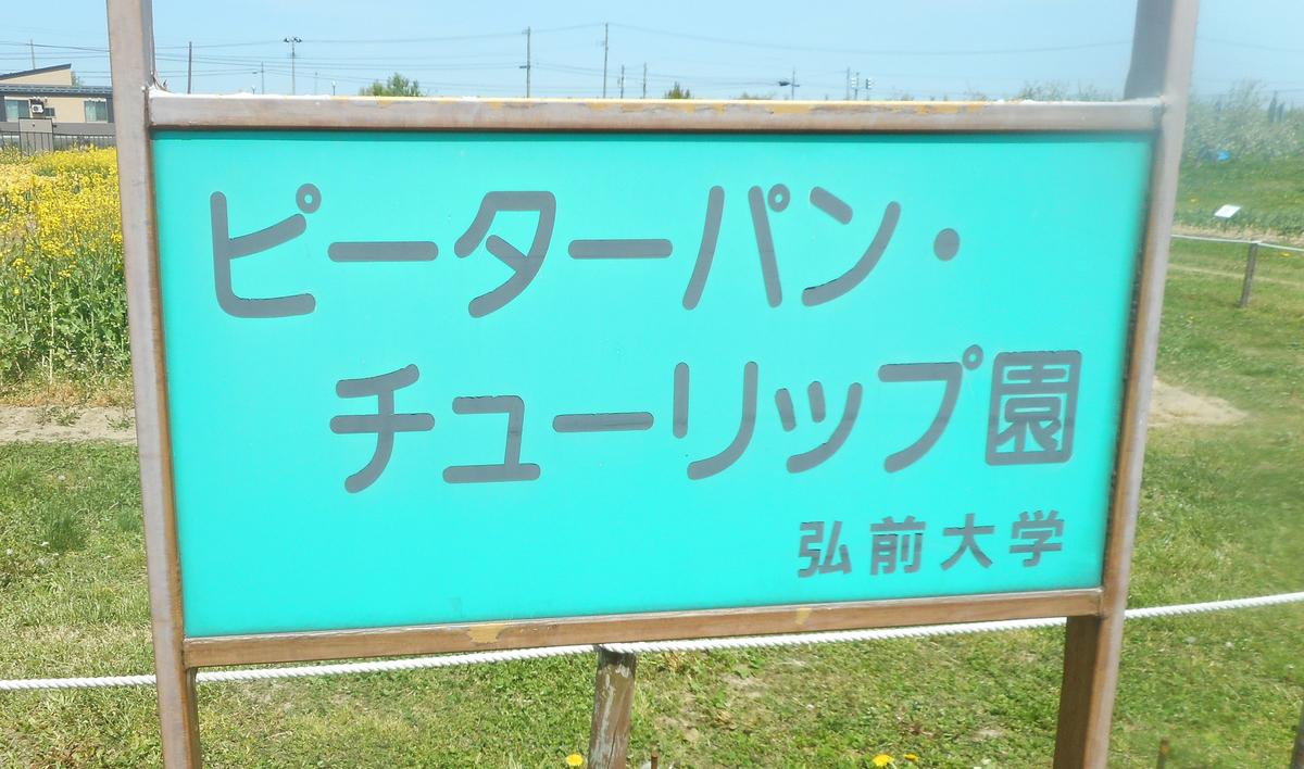 f:id:fgtyokochan:20190516173951j:plain