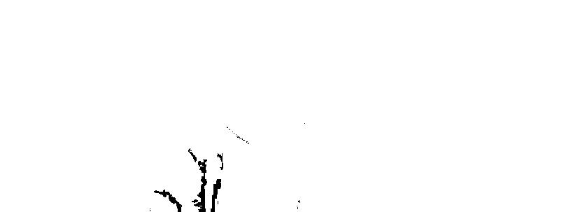 f:id:fiarivo:20170331145051p:plain
