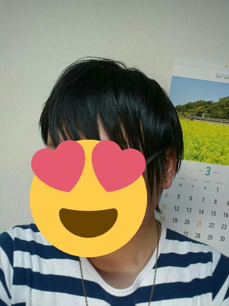 f:id:fileo-kaisou:20180326210826j:plain