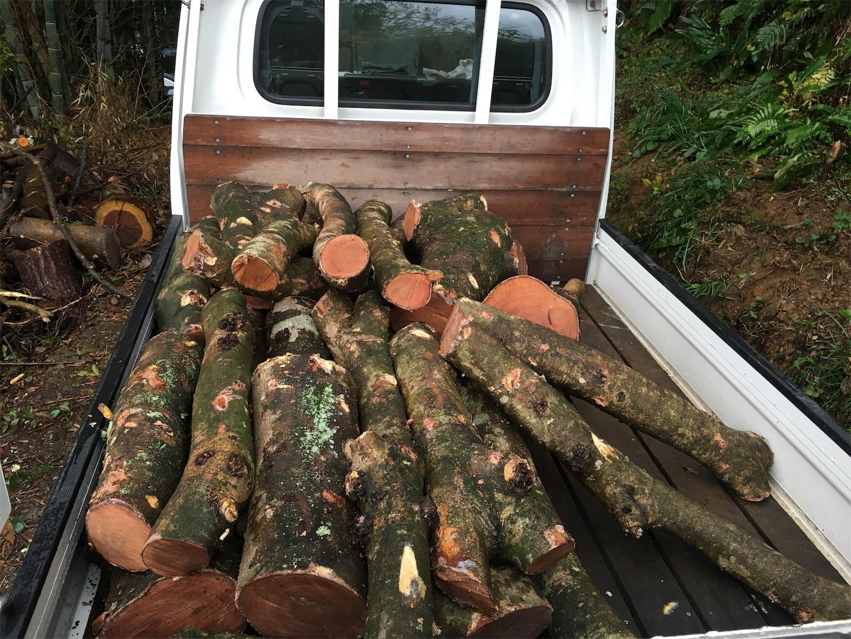 f:id:firewoodblog:20181207120921j:image