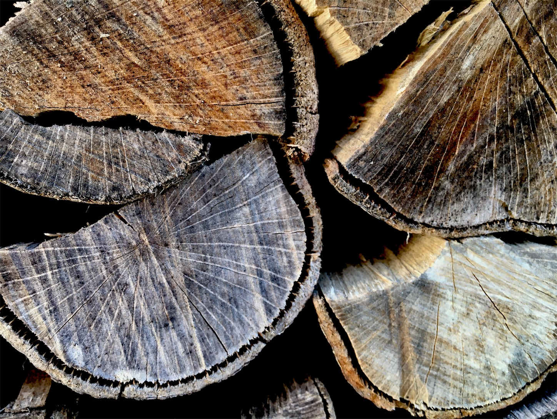 f:id:firewoodblog:20190221131025j:image