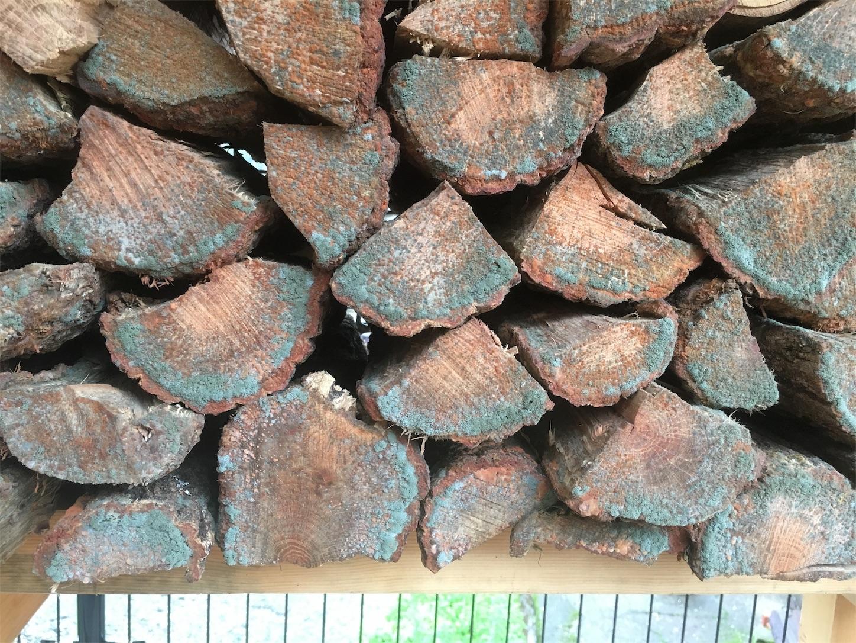 f:id:firewoodblog:20190718222702j:image