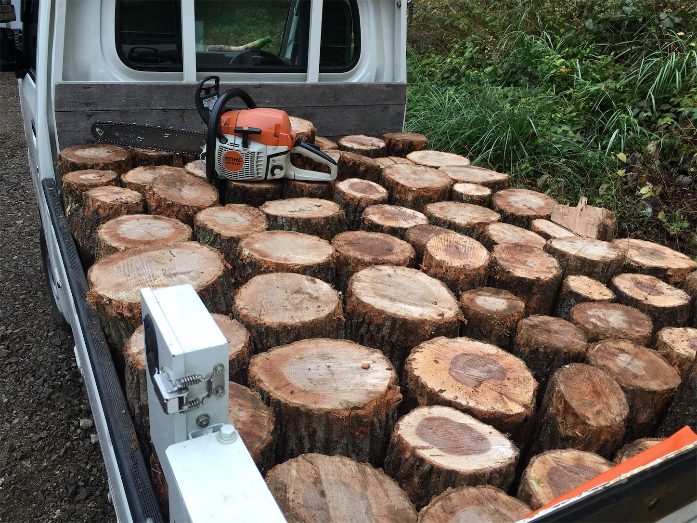 f:id:firewoodblog:20191124144104j:image
