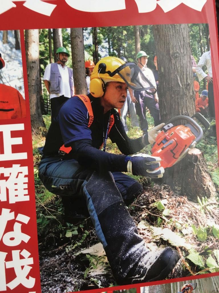伐倒ラインにあわせる林業者