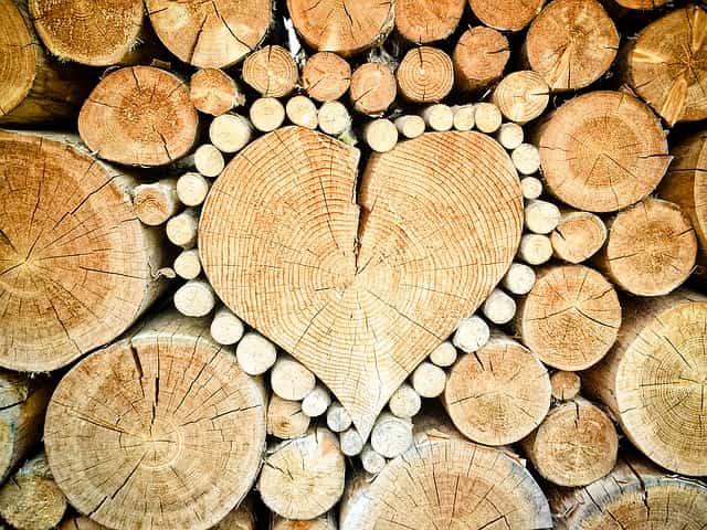 f:id:firewoodyamazaki:20170313164352j:plain