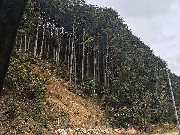 f:id:firewoodyamazaki:20170327084133j:plain