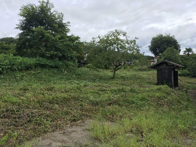 薪山崎2017年8月の草刈り