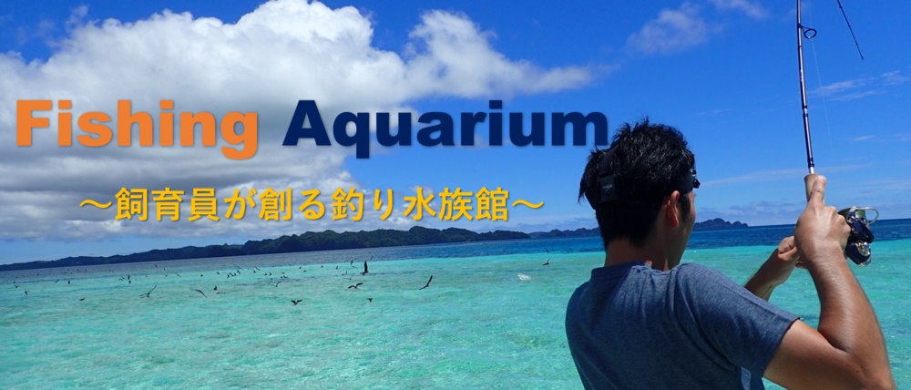 f:id:fishing-aquarium:20180930181215p:plain