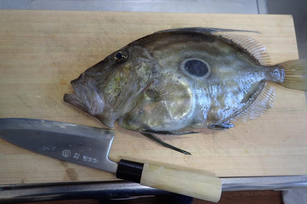 f:id:fishing-aquarium:20181123182448j:plain