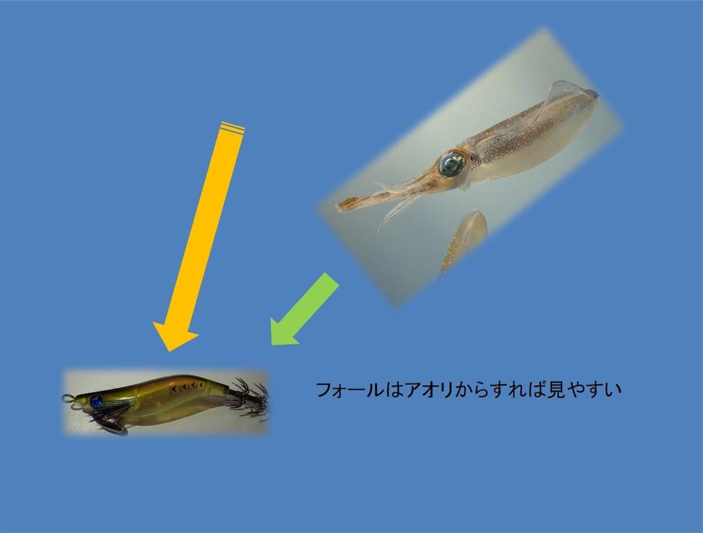 f:id:fishing-aquarium:20190125202314j:image