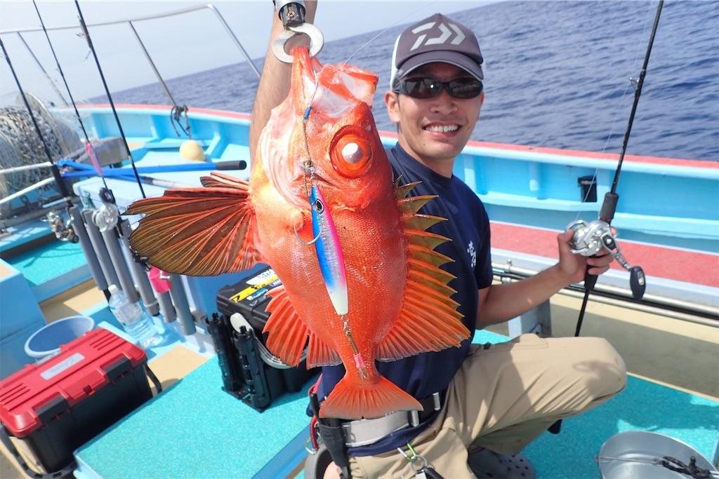 f:id:fishing-aquarium:20190625204230j:image