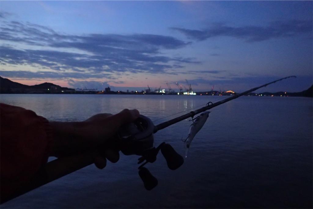 f:id:fishing-aquarium:20190925104910j:image