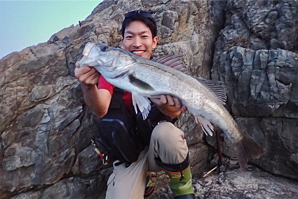 f:id:fishing-aquarium:20191022203738j:image